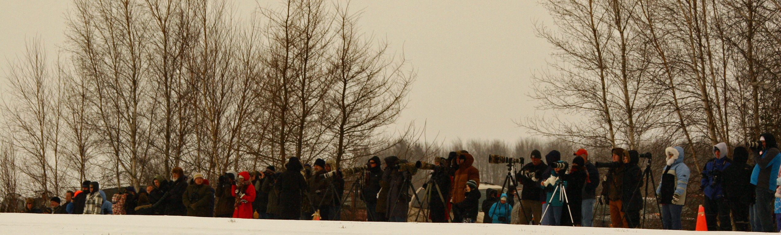 Eagle watchers at 2012 Eagle watch